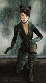 Catwoman by Darkslayer092