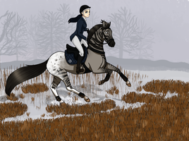 FFA Blinded Mirror - Cross Country by evvervescent