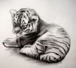 Tiger Cub by HeavyTomato