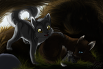 Graystripe in Riverclan by Yolly-anda