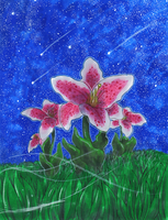 Stargazing Lillies by matsuyama-takeshi