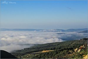 Fog on the valley by ShlomitMessica