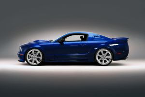 Blue Saleen - Wheel 0ptions by lovelife81