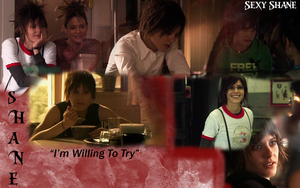 The L Word - Shane Wallpaper by syngeforever