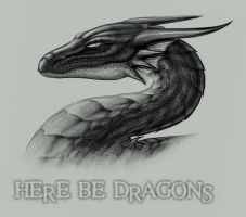 Here Be Dragons by LeoJr