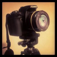 CANON 50mm bokeh cool cover by cavalars