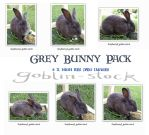 Grey Bunny Pack by GoblinStock