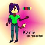 New Character: Karlie the Hedgehog by DaraTheExplorer