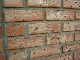 Brick Wall by houseki-stock