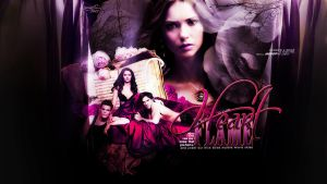 vampire diaries wallpaper 15 by mia47
