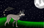 ::RQ::  Moonlit Night by Blackfur223