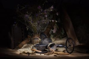 Still Life by ElinasArt
