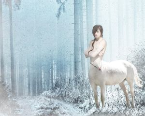 Centaur in the Winter
