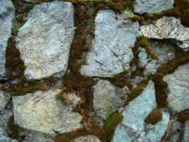 Mossy Stone by Limited-Vision-Stock