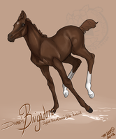 Bright Brigand by SunsetRevelation