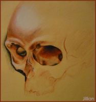 Unfinished Skull by Gilliann