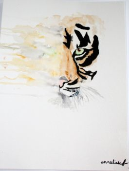 Eye of The Tiger by stuff73920147