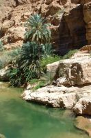 S-stock: Wadi Shab 3 by shiama-stock