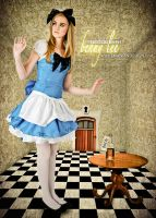 Alice in Wonderland 07 by Benny-Lee