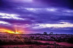 HDR Sunset by itilispeer