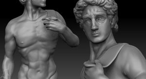 Michelangelo's David - Work in Progress by iemersonrosa