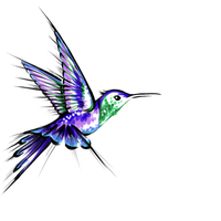 Humming Bird Tattoo Design by dracarysis