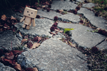 walking with danboard by heoni