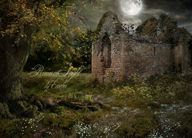 PREMIUM background - Ruins at Night by Euselia