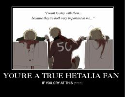 Hetalia Demotivational Poster by Notallama11
