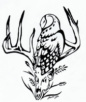 Barn Owl and Deer Skull Inks by MorRokko