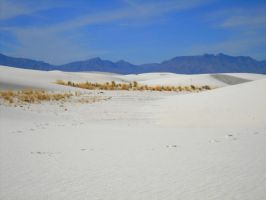 White Sands National Monument by SharPhotography