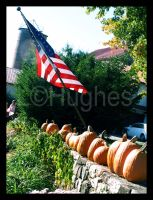 American Pumpkins by lehPhotography