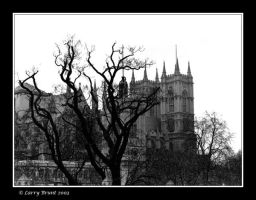 Westminster Abbey and Tree by inessentialstuff