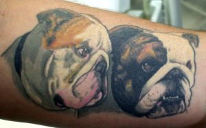 bulldogs tattoo by thothflashpan