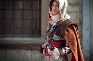 LOOK AT MY SEXY FACE BITCH - Assassins Creed 2 by Jiosan