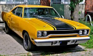Yellow Roadrunner by cmdpirxII