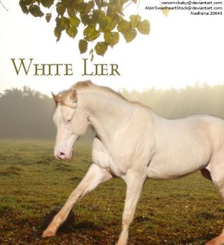 White Lier by Cowgirl90