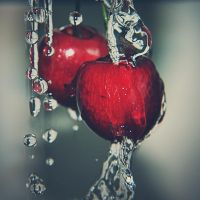 cherries by PaperMarionett