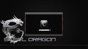 Steel Dragon Logon screen by poweredbyostx