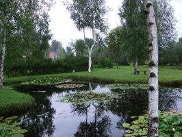 A pond in a garden by SpalvotasZaltys