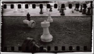 Holga Chess by dogsofeternity