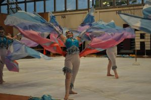 Archbishop Wood Indoor Color Guard by Flower-of-Grace