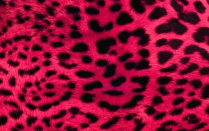 Pink Leopard Print Wallpaper by angeldust