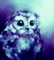 Owl by RedGraf