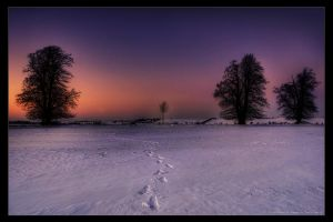 winter evening IV by stg123