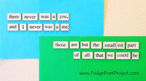 The Daily Magnet #265 by FridgePoetProject