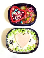 For love of Bento by missmixedup