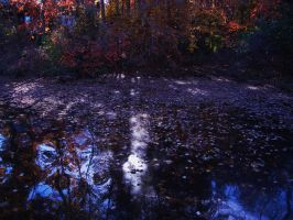 Abstract autumn dreams by KDMB