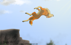 Back flip by Saiccu