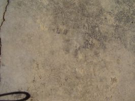Texture 6 by Couch-and-Canvas